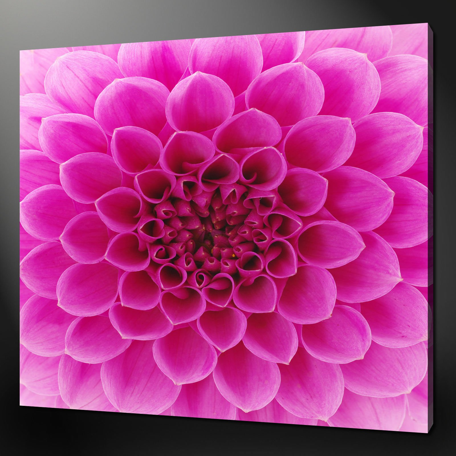 Pink canvas wall art classic style pink canvas print 3 for Modern flower paintings