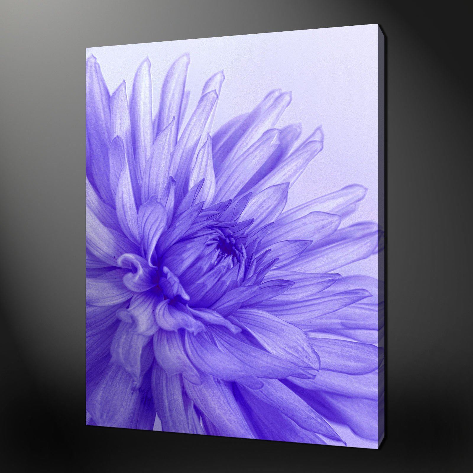 purple flower wall art aliexpress mobile global online shopping for apparel phones with. Black Bedroom Furniture Sets. Home Design Ideas