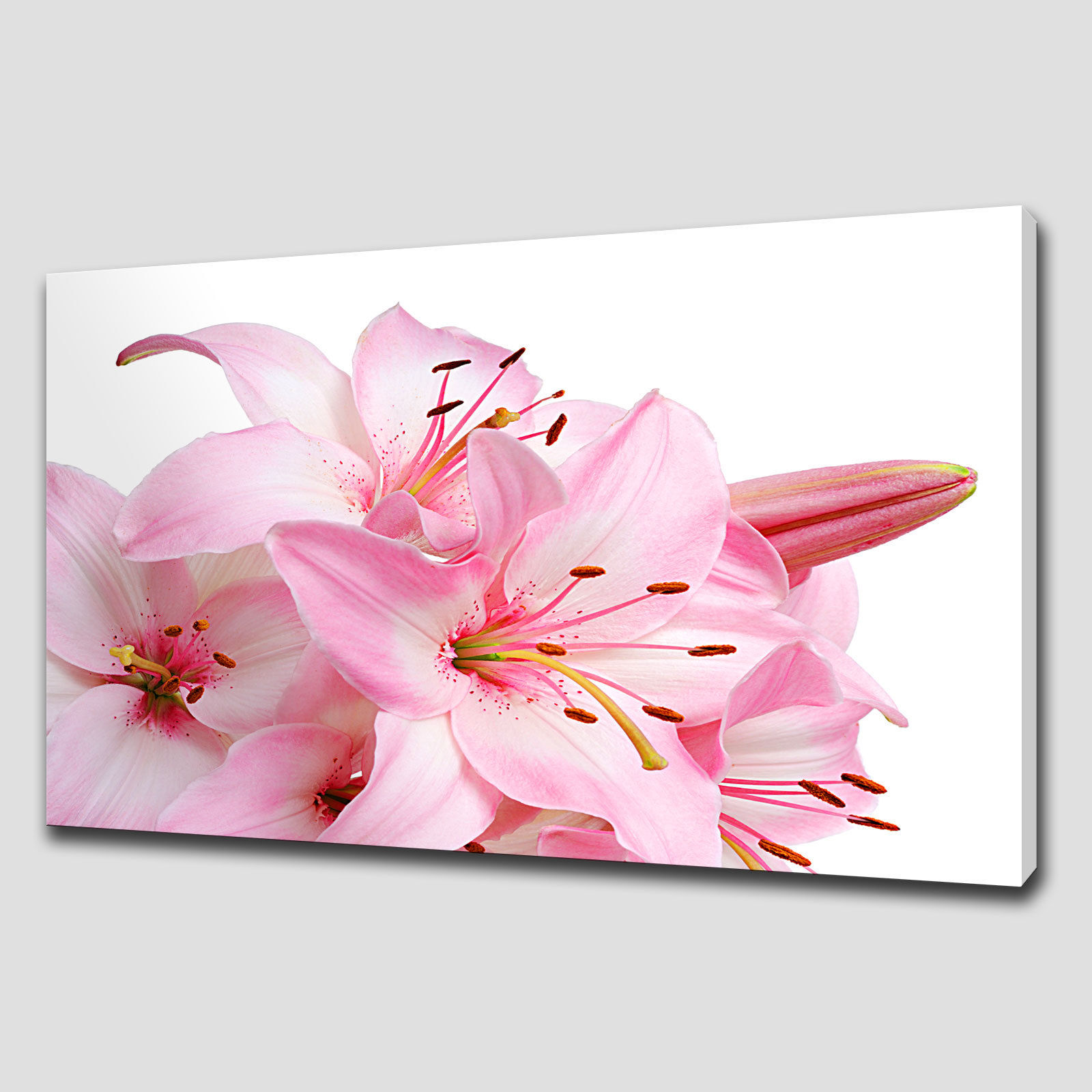 Pink lily floral large canvas wall art canvas print art for Floral wall art