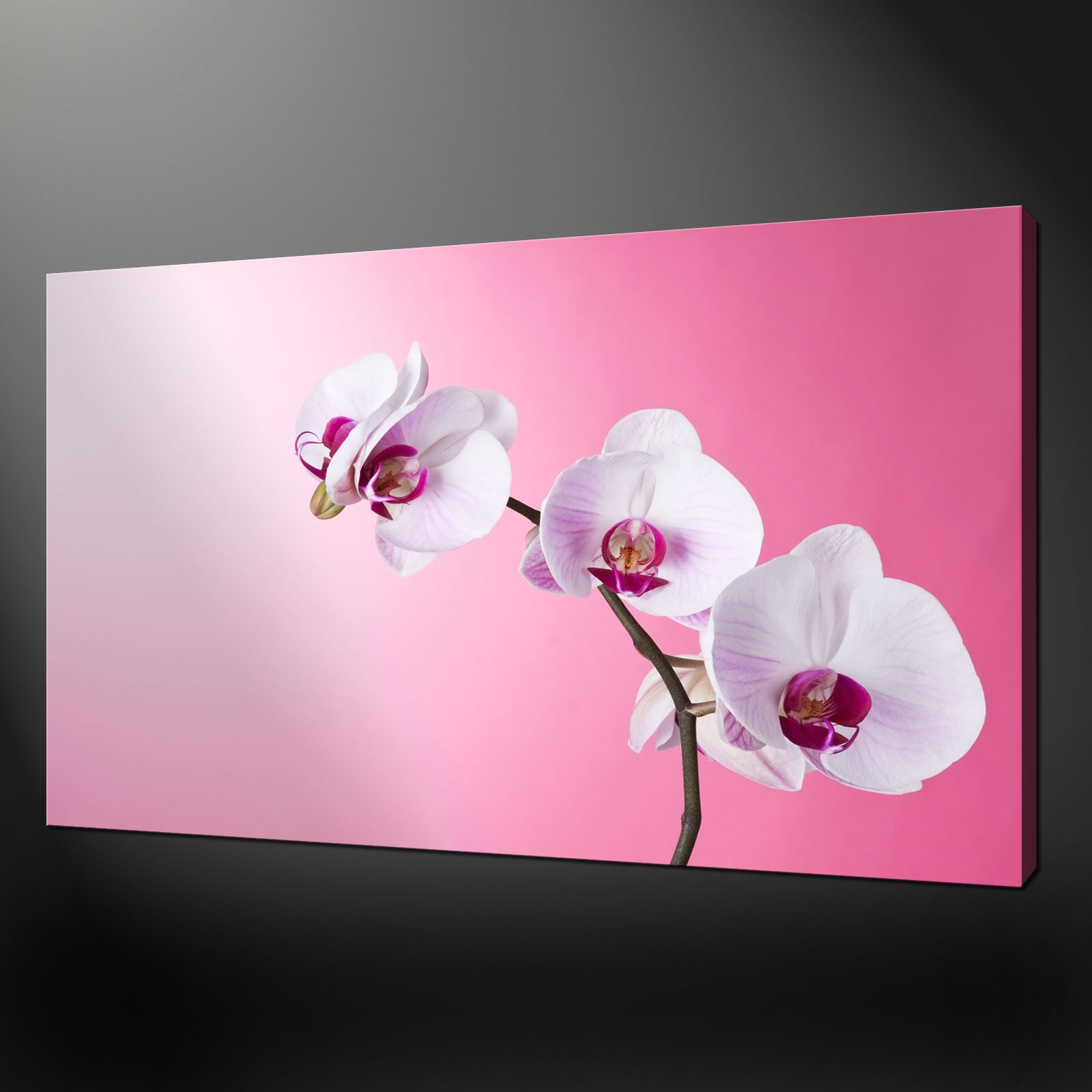 Cabbage Rose Flower Print Purple Abstract Art Kitchen Wall: PURPLE ORCHIDS QUALITY PREMIUM CANVAS PRINT PICTURE WALL