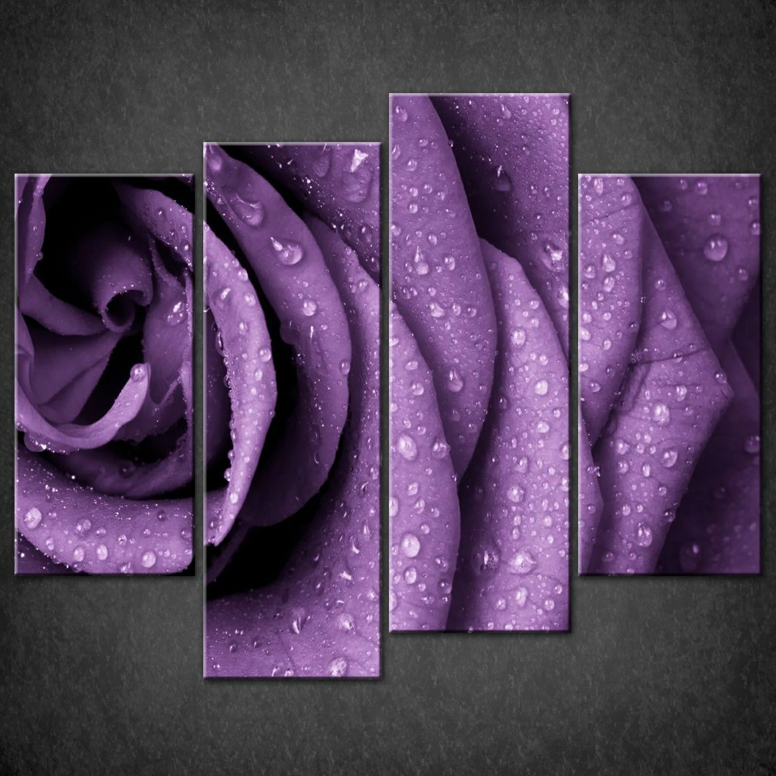 purple rose split canvas wall art pictures prints larger sizes available canvas print art. Black Bedroom Furniture Sets. Home Design Ideas
