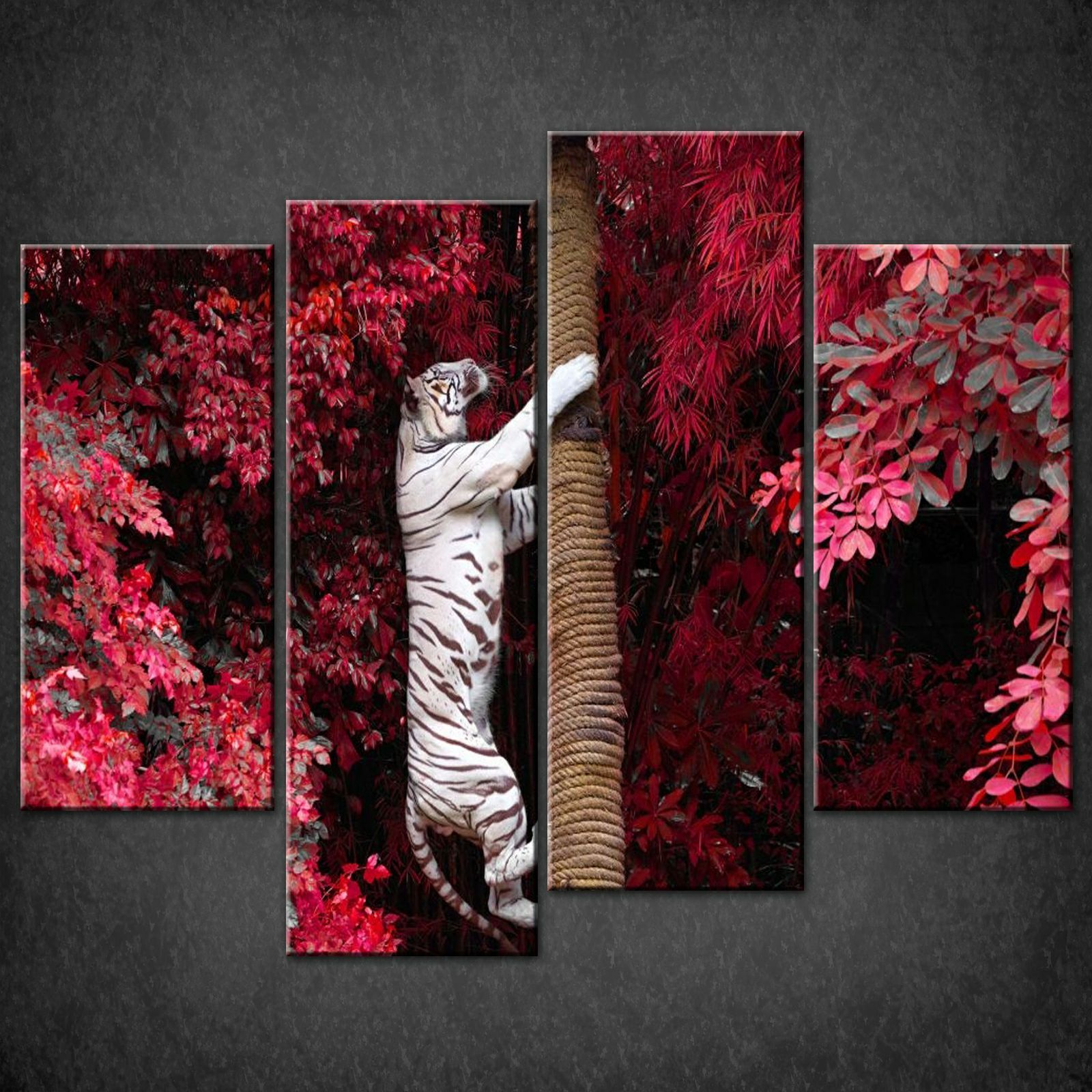 Wall Art Split Canvas : Tiger climbing tree split canvas wall art pictures prints